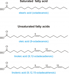 fatty_acids